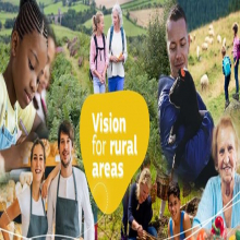 HAVE YOUR SAY - LONG TERM VISION FOR RURAL AREAS